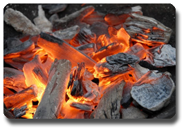 Vign_du-charbon-de-bois